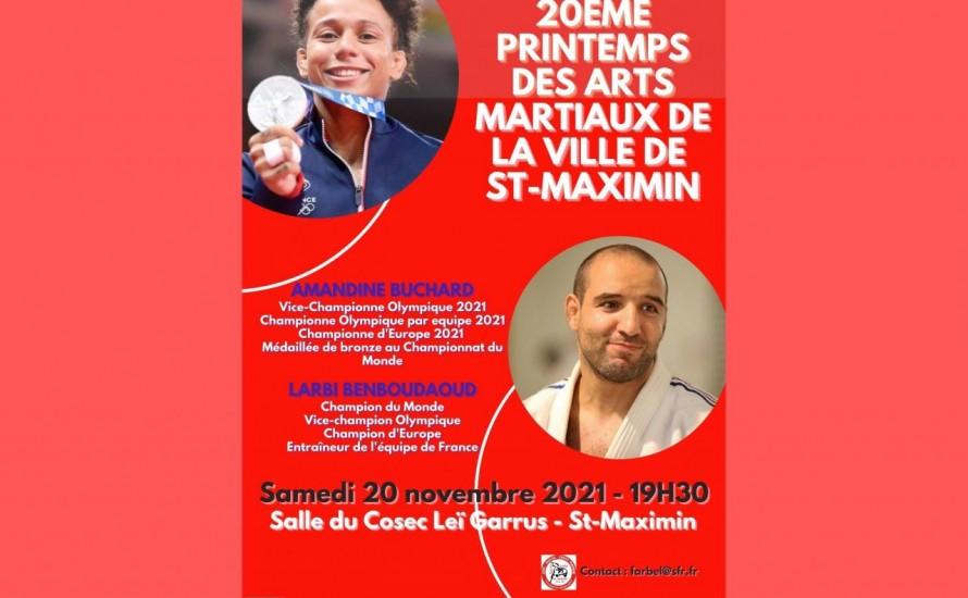 20 ème printemps des arts martiaux de la ville de Saint Maximin